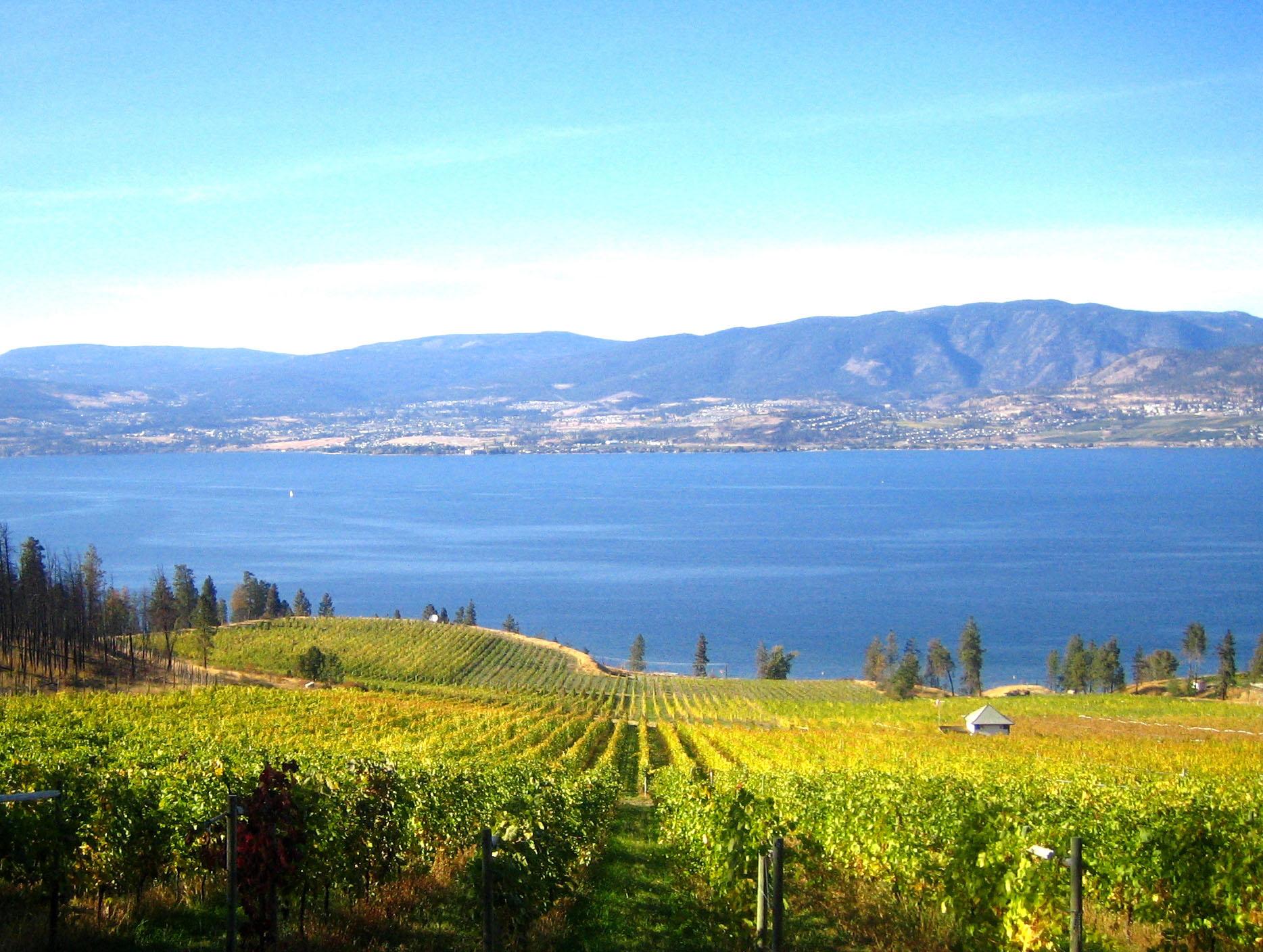 St-Hubertus-Estate-Winery