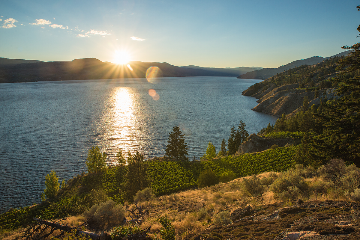 Experience Kelowna with These New Incentives at ONE Water Street